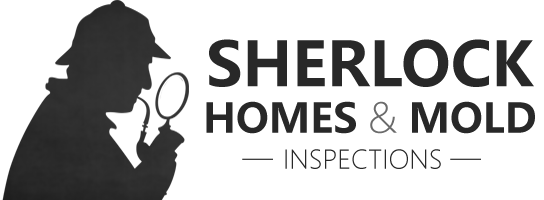 Sherlock Homes & Mold Inspection